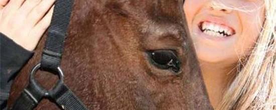 ein-pferdesommer-cover