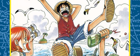 one-piece-cover