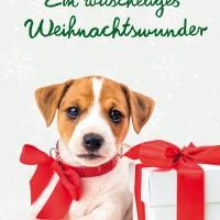 wuscheliges-Weihnachtswunder-cover